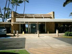 ハワイ・ワイキキ水族館