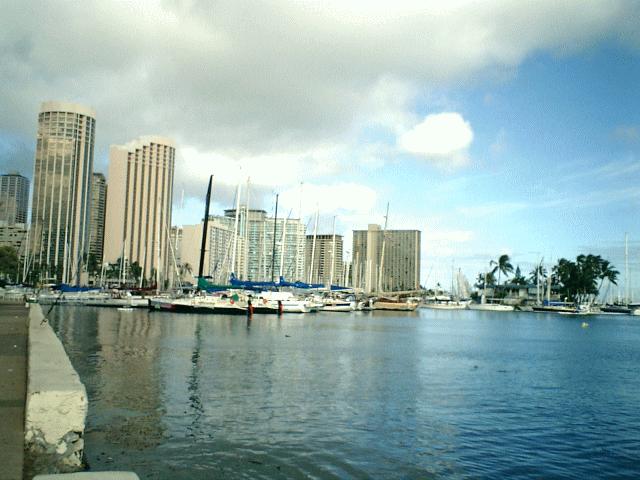 ハワイ アラワイ運河1